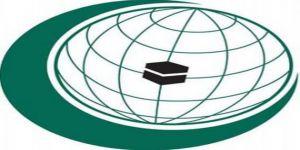 منظمة التعاون الإسلامي تشارك في مؤتمر الأمم المتحدة الثاني لمكافحة الإرهاب