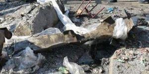 مقتل جنود ماليين في هجوم إرهابي قرب الحدود مع موريتانيا