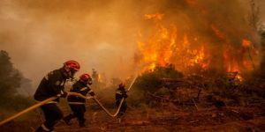 الألكسو تعزّي الجزائر في وفاة عدد من المواطنين والجنود إثر اندلاع حرائق في عدد من محافظاتها