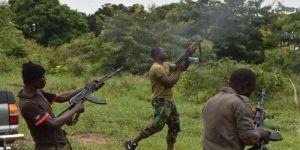 مسؤول أفريقي يؤكد أن ظاهرة انتشار الأسلحة في أفريقيا أحد الأسباب المغذية للعنف المسلح