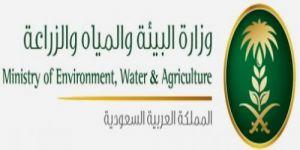 وزارة البيئة تعلن عن 15وظيفة شاغرة بمسمى مساح على المرتبتين السادسة والخامسة في عدد من مناطق المملكة