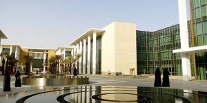 وظائف أكاديمية شاغرة في جامعة نورة بنظام المكافأة