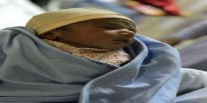 المطوفون آل السلفي يشاركون حاجين قدوم مولدهم عثمان