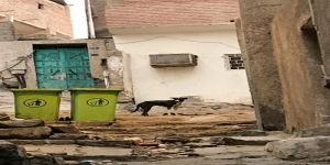 بعد طول صمت البلدية الضالة تحاصر ببطون خاوية منازل كحل مكة