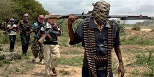 السلطات النيجيرية تؤكد أن هجمات بوكوحرام تسببت في تهجير 3.3 ملايين شخصًا