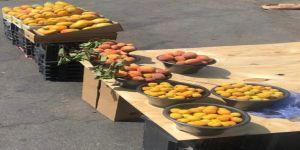 بلدية خميس مشيط تنفذ 358 جولة ميدانية خلال الأسبوع الماضي