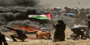 الجامعة العربية تطالب الجنائية الدولية بالتحقيق في جرائم حرب قوات الإحتلال بحق فلسطين