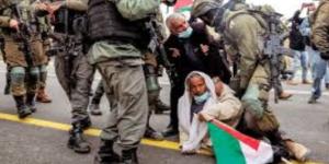 الميثاق العربي لحقوق الإنسان ترحب بتحقيق دولي فى الانتهاكات بالأراضي الفلسطينية المحتلة