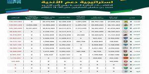 الكفاءة المالية تعلن عن إجمالي الالتزامات الواجبة السداد لأندية دوري كأس الأمير محمد بن سلمان للمحترفين